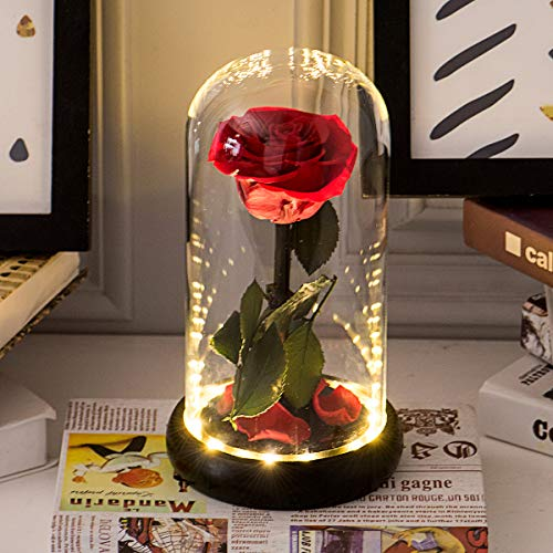 Sunia Beauty and The Beast Rose Handmade Preserved Fresh Rose in Glass Dome with Gift Package Romantic Forever Gift for Mother's Day Valentine's Day Anniversary Wedding Birthday(2:Real Rose in Glass)