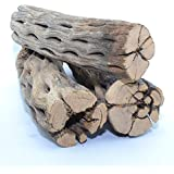 """King Sized Natural Cholla Wood XL Large Thick Pieces