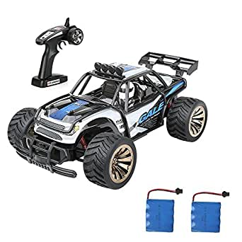 Distianert Electric RC Car Offroad Remote Control Car RTR RC Buggy RC Monster Truck 1:16 2WD 2.4Ghz High Speed with 2 Rechargeable Battery