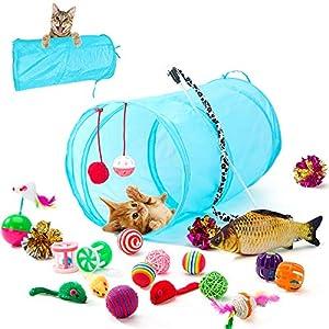 HIPIPET 21PCS Cat Toys Interactive Kitten Toys Assortments Tunnel Balls Fish Feather Teaser Wand Mice 12
