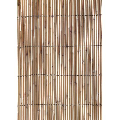 World Source Partners 3.5' x 13' Reed Fencing