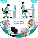Lumbar Support Pillow/Back Cushion, Memory Foam