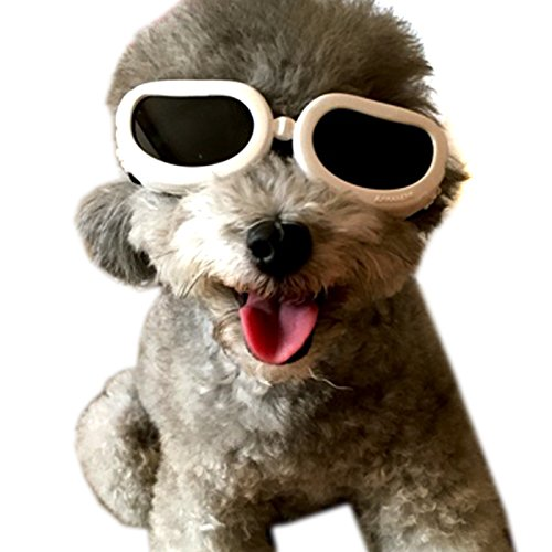 Alfie Pet by Petoga Couture - Larry Sun Glasses for Dogs and Cats - Color: White, Size: XS by Alfie