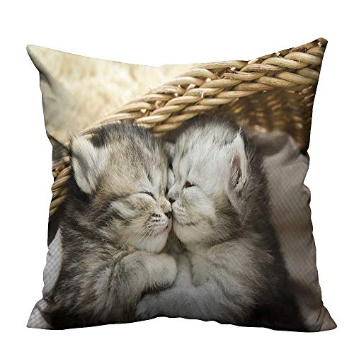 - alsohome Sofa Waist Cushion Cover Cute Tabby Kittens Sleeping and Hugging in a Basket Ideal Decoration 17.5x17.5 inch(Double-Sided Printing)