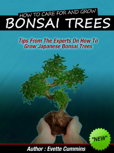 How To Grow And Care For Japanese Bonsai Trees - Tips From The Experts (Japanese Ornamental Tree)