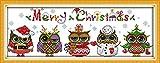 Astitch Stamped Cross Stitch Kits 11CT Cute Design Fabric Christmas Owls