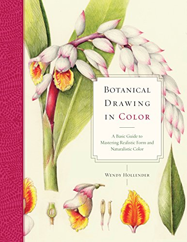 Botanical Drawing in Color A Basic Guide to Mastering Realistic Form and Naturalistic - Painting Flower Basic