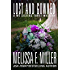 Lost and Gowned: Rosemary's Wedding (A We Sisters Three Mystery Book 4)