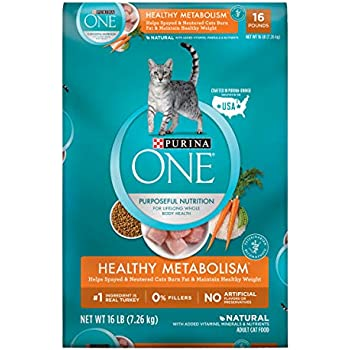 Amazon Com Purina One Indoor Advantage Hairball