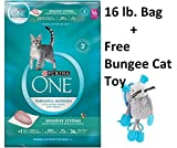 Purina ONE Sensitive Systems Adult Premium Cat Food (4 Bag - 16 lb + Free Toy)