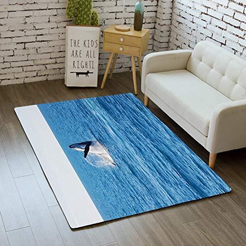 (Door Mat Indoor Rugs Bathroom WC Bedroom Floor Mats Home Decor Rug,Australia Free Whale Ocean Like,Living Room Carpets)