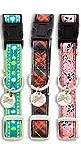 PetSafe Bark Avenue Quick Snap Dog Collar, Medium 3/4-Inch Pink Zinnias