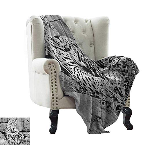 Bed Blanket Black and White,Jaguar Wild Big Cats Theme Feline with Dots Body Fur Jungle Tiger Leopard, Black White Warm Couch/Bed Throws Blanket 60