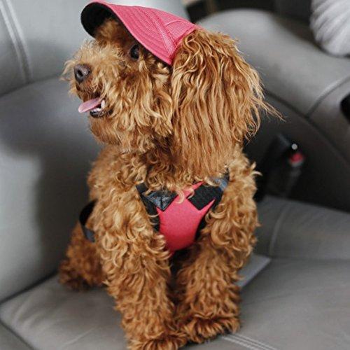 Yalatan Dog Hat With Ear Holes Casual Dog Baseball Cap Pet Summer Hat Outdoor Supplies Pet Sports Hat