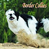 Border Collies Calendar - 2015 Wall calendars - Dog Calendars - Monthly Wall Calendar by Magnum