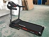 Go Pro Fitness Treadmill L-690