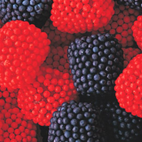 Blueberry and Strawberry Blue&Red Gumdrops 1lb Bag