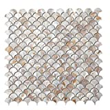 Diflart Oyster Mother of Pearl Shell Fan Shaped Fish Scale Mosaic Tile 10 Sheets/Box (Fan-Shaped, Dark Colorful Oyster)