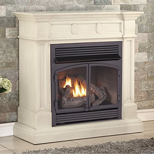 Duluth Forge Dual Fuel Vent Free Fireplace-32,000 BTU, Remote Control, Finish Gas Fireplace Antique White ()
