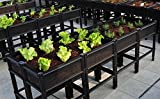 Large Raised Vegetable Planter