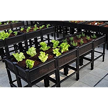 Keter Easy Grow Patio Garden Flower Plant