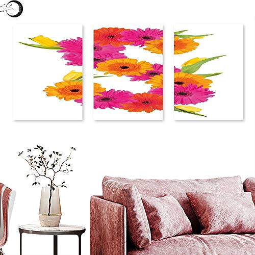 J Chief Sky Letter S Abstract Painting Fragrance C Garden Flourishing Nature Essence of Nature in Alphabet Wall Painting Orange Hot Pink Green Triptych Art Canvas W 12