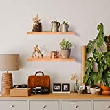 Labcosi Floating Shelves Wall Mounted with