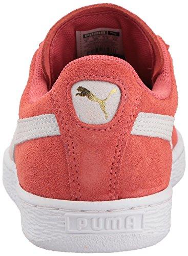 Corallo Wn Bianco Americano B Donna Speziato Cammeo Classica Puma Bianco Sneaker In m Marrone Pelle Da Scamosciata Ov5xPwqZS
