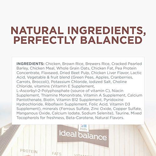 Natural Balance Dog Food Price Philippines