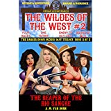 The Wildes of the West #2: The Reaper of the Rio Sangre (The Danger Down Mexico Way Trilogy Book 1): Old west fiction of action adventure, romance & western family drama