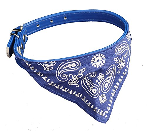 Cute Dog Collars For Small Dogs or Cats, Bandana Style, Adjustable, in Colors Red and Blue (Blue)
