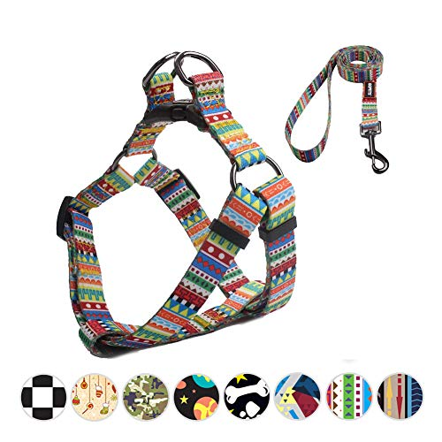 QQPETS Escape Proof Dog Harness and Leash Set Soft Comfortable No-Pull Pet Dog Harness for Extra Small XS Puppy Breed Girl Boy Adjustable Chest:12-18″ Hiking Walking Running