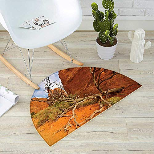 National Parks Semicircle Doormat Rock on The Grand Canyon Monument Valley Heart of Nature Utah Photo Print Halfmoon doormats H 51.1