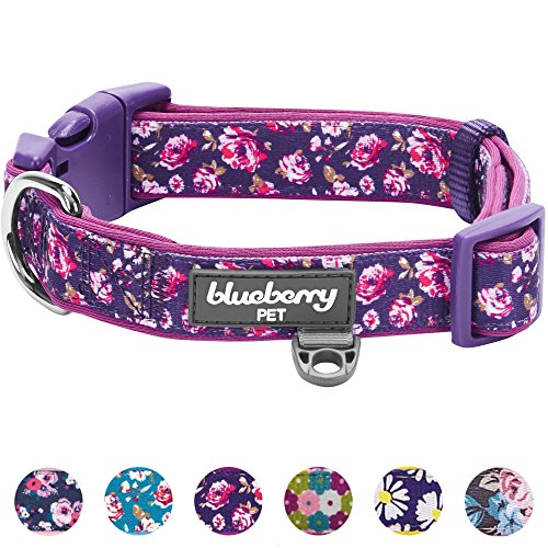 Purple Dog Dog Collar - Blueberry Pet 6 Patterns Soft & Comfy Rose Print Plum Purple Padded Dog Collar, Large, Neck 18