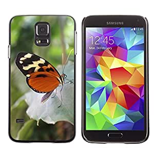 Super Stella Slim PC Hard Case Cover Skin Armor Shell Protection // M00148629 Butterfly Animal Insect Proboscis // Samsung Galaxy S5 S V SV i9600 (Not Fits S5 ACTIVE)