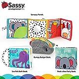 Sassy Rookie Books Baby Box - 2+ Months