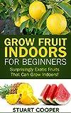 Grow Fruit Indoors For Beginners: Surprisingly Exotic Fruits That Can Grow Indoors! (beginners gardening, grow fruits indoors, urban farm, indoor gardening, ... organic fruit grow, grow exotic fruit,)