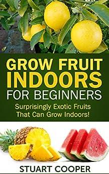 Organic Indoor Gardening Grow fruit indoors for beginners surprisingly exotic fruits that grow fruit indoors for beginners surprisingly exotic fruits that can grow indoors beginners workwithnaturefo