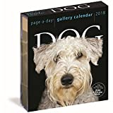 Dog 2018 Page-A-Day Gallery Calendar