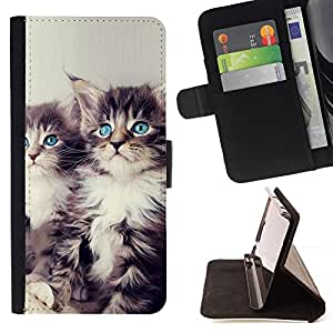 For Apple Iphone 5C Blue Eyed Kittens Beautiful Print Wallet Leather Case Cover With Credit Card Slots And Stand Function