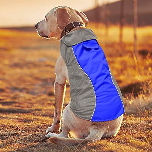BSEEN Waterproof Dog Coat, Soft Fleece Lined Reflective Dog Jacket for Winter, Outdoor Sports Pet Vest Snowsuit Apparel, S-XXXL (M, Blue)