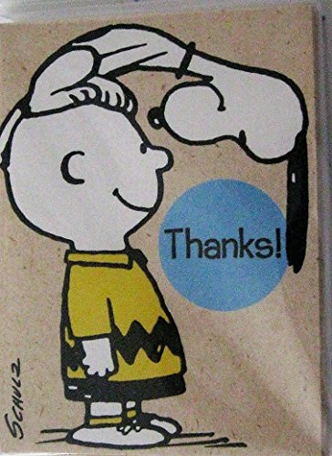 Hallmark Peanuts Snoopy Charlie Brown Package 10 Thank You Cards - Snoopy You Thank