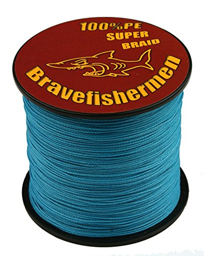 Bravefishermen strong pe braided fishing line 10lb to100lb for Strong fishing line