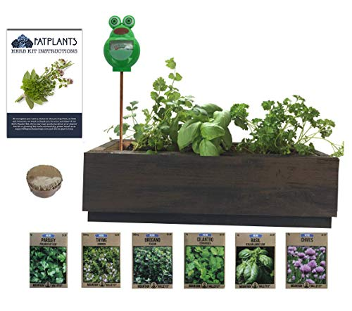 (Herb Garden Cedar Planter - Complete Herb Garden Kit - Indoor Garden Seeds Growing Kit - Grow Cooking Herbs Basil, Chives, Oregano, Parsley, Thyme & Cilantro - Choice of 2 Colors)