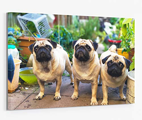 Canvas Prints with Your Photos, Custom Pictures On Gallery Wrapped Giclee Painting Wall Art Home Decor Personalized Gift 11x14 Inch