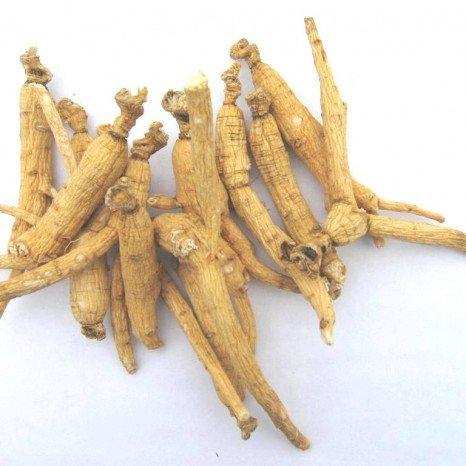 Yi Shan Shen (Wildcrafted 10yr Mountain Ginseng) Medicinal Grade Chinese Herb 1 - Ginseng Root Chinese