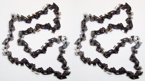 Homelite UT-43160/30254EG Ryobi RY43160 Pole Saw (2 Pack) Replacement Chain # 901289001-2pk