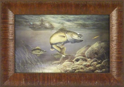 Taking The Bait by Jim Hansel 11x15 Walleye Fish Fishing Framed Art Picture Wall Décor Picture