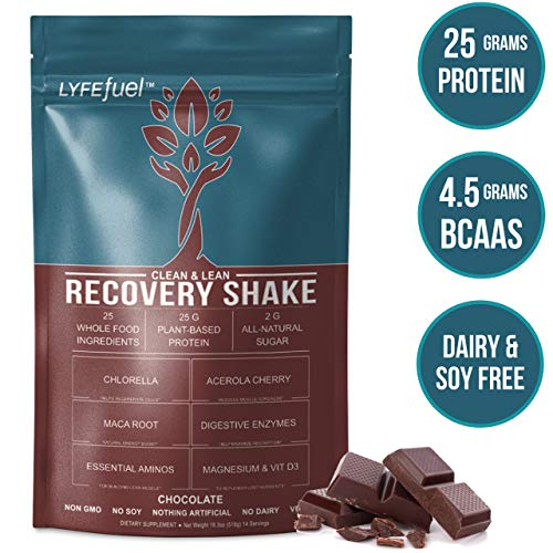 LYFE Fuel Post Workout Recovery Shake | Keto, Vegan & Gluten Free Plant Based Superfood Protein Mix | Chocolate | 25g of Protein | Soy and Dairy Free | 1 LB Bag