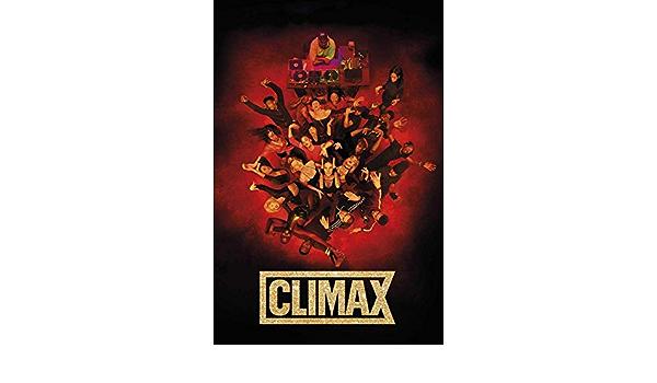 F-240 Climax Movie Gaspar Noé Sofia Boutella Custom Fabric Poster 32x48 24x36in